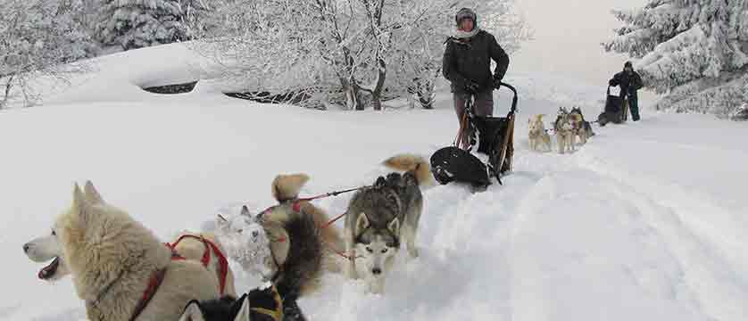 france_chamonix_Dog-Sledding-Huskydalen.jpg